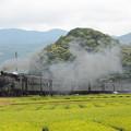 Photos: C10急行かわね路 大井川鐵道家山~抜里02
