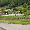 Photos: 南海21000系普通 大井川鐵道塩郷駅周辺02