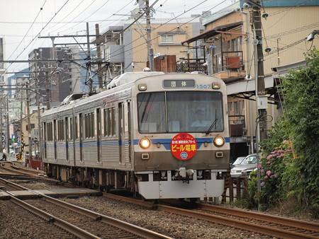 静岡鉄道1000形  ビール列車 柚木~春日町02