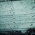 Photos: 雨粒ピント ~iPhone Drop