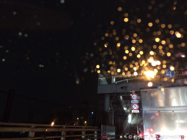Photos: Rain night shower ~帰りたくない夜