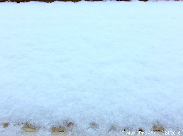 11.24WhiteXmasEve~1か月前、初雪