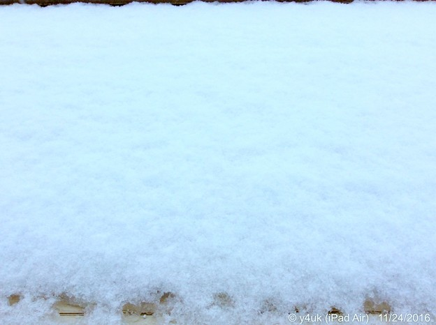 Photos: 11.24WhiteXmasEve~1か月前、初雪