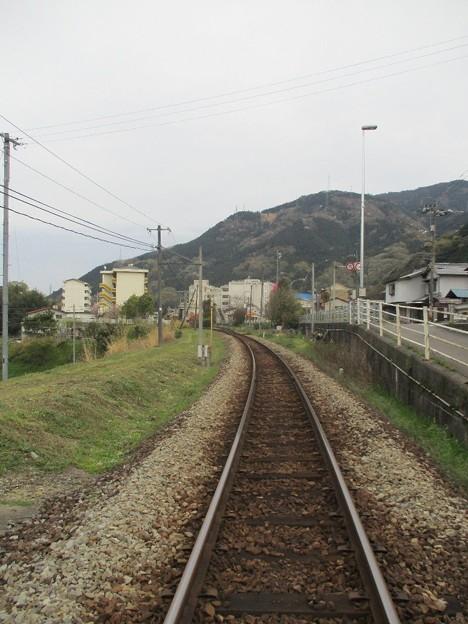 Photos: 03tsukudatsuzi_24