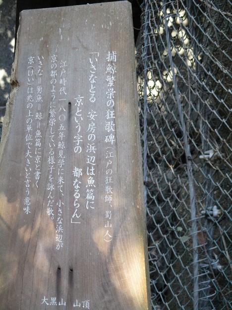Photos: awakatsuyama_16