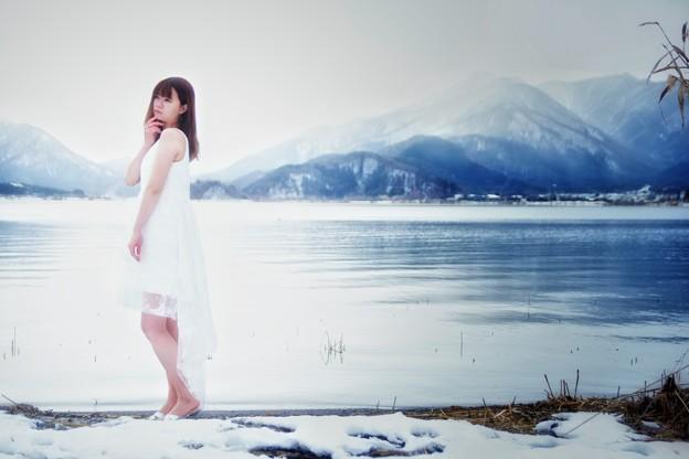 写真: 雪化粧
