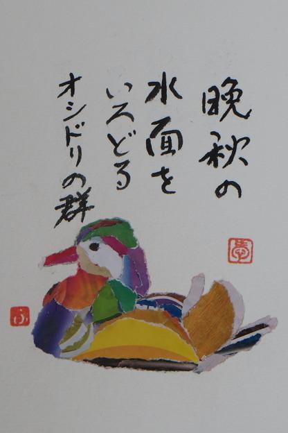 オシドリ IMG_3200 by ふうさん