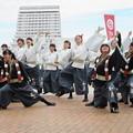 Photos: 京炎 そでふれ!京躍華さん