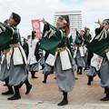 Photos: 京炎 そでふれ!志舞踊さん