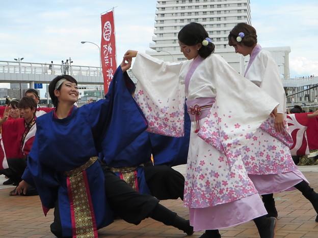 神戸大学よさこいチーム山美鼓さん