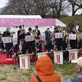 2017.03.26 桜フェスタ in 八幡市