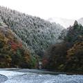 Photos: 雪と紅葉