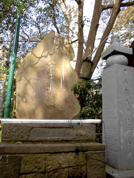 Photos: 世田谷線:松原駅界隈_西福寺-15