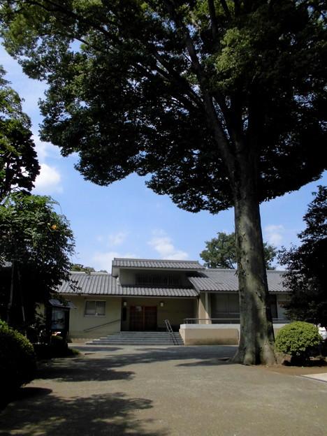 世田谷線松原駅~京王線桜上水駅界隈:密蔵院-09