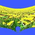 写真: the world of yellow-02