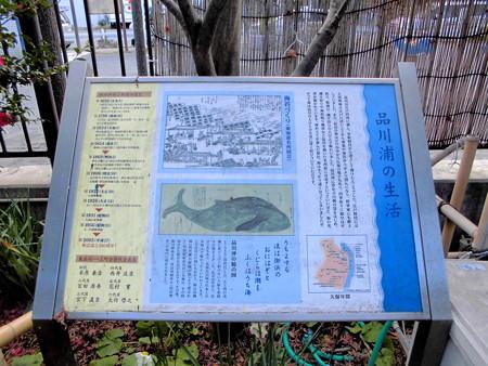 東品川_鯨塚-01b
