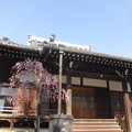 写真: 日夜山正徳寺-03本堂b