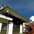 写真: 法禅寺_お堂と杉森稲荷の鳥居-02