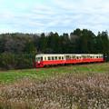 写真: 里山電車