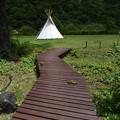 Photos: 椹島