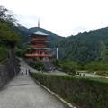 写真: 三重塔と那智の滝