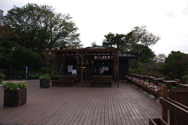 かつらぎ茶寮