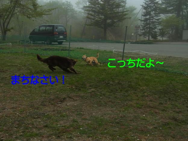 Photos: 05月27日2