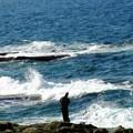 写真: 荒磯釣り:千畳敷04
