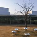 写真: 金沢21世紀美術館04