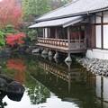写真: 晩秋好古園14