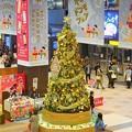 写真: ★北国のツリー~仙台★