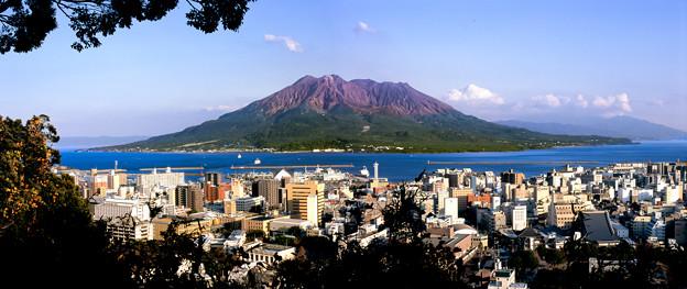 Photos: 桜島~城山展望台より~