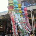 Photos: 紅陽会館