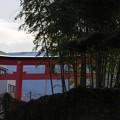 Photos: 神社