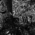 写真: 石仏の寺