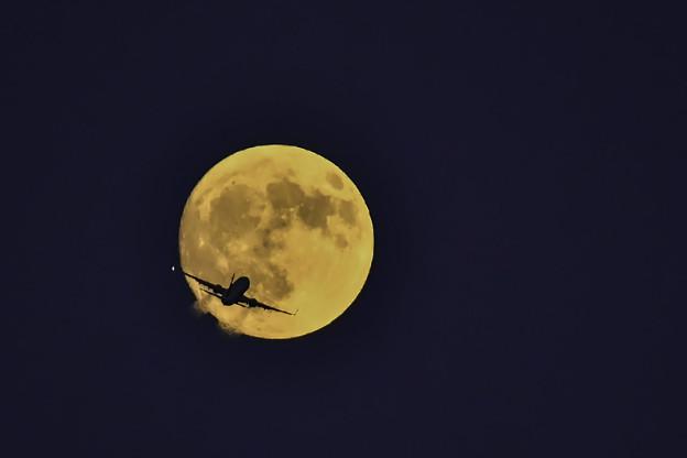 赤い月に向って