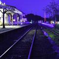 写真: 無人駅のイルミ (2)