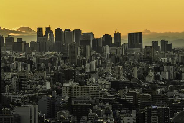 Photos: シビックセンターより