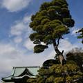 写真: 水行「本行寺」