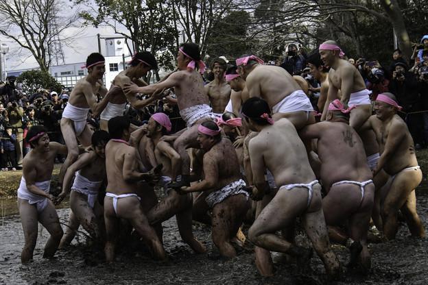 和良比どろんこ祭り2 (1)