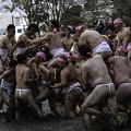 Photos: 和良比どろんこ祭り2 (1)