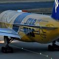 写真: C-390ANAJET