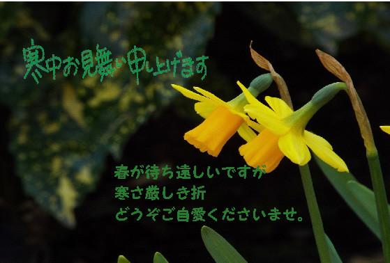 Photos: 寒中3