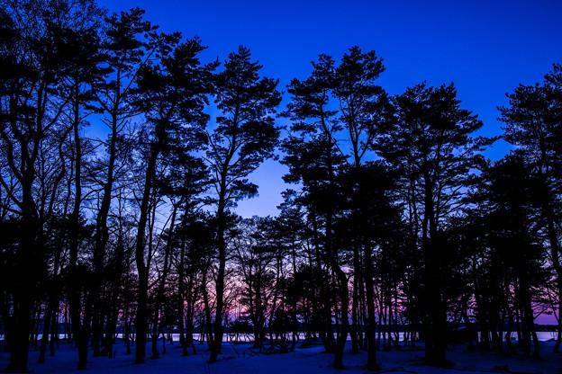 写真: 残り陽