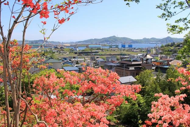 本輪西八幡神社 (4)
