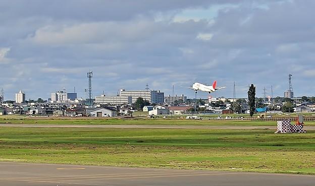 札幌丘珠空港にて(OKADAMA Airport) (8)
