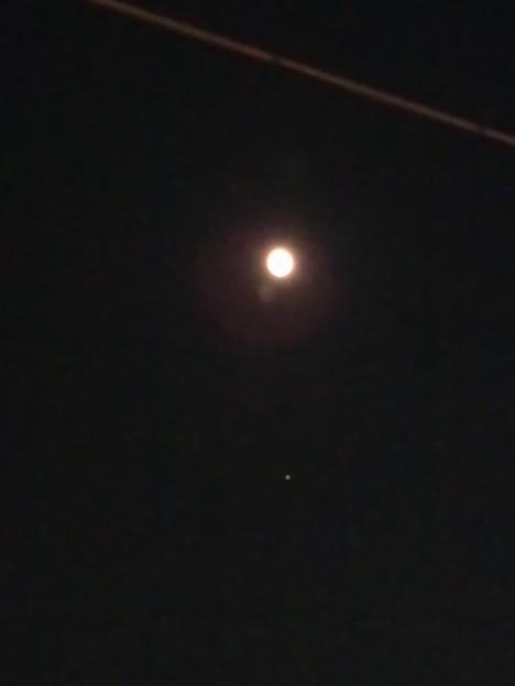 そういえば、今日、帰って来る時、月と火星が綺麗に縦並びしてたよ。