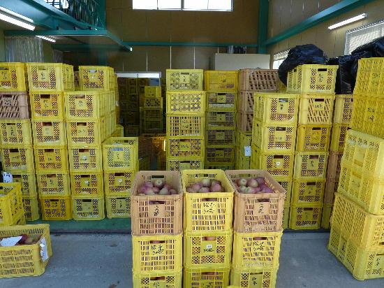 Photos: 農産物直売所『松永うの花農園』025