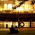 Yokohama lights  -gold-