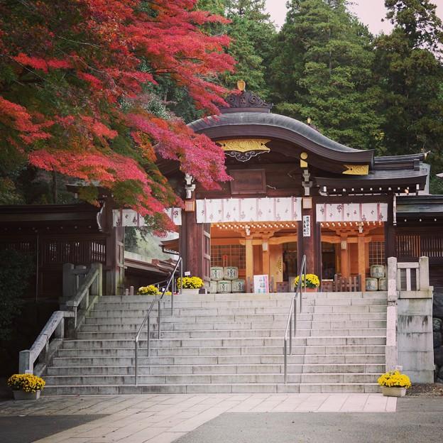 今度は神社です(^。^)